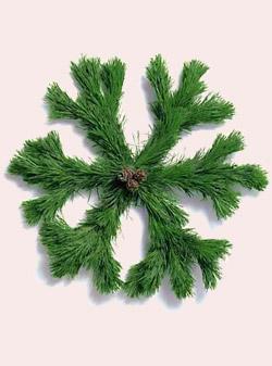 snowflake-wreath.jpg