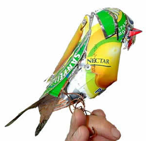 parrot_front_detail.jpg