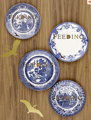 feeding.jpg